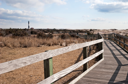 Copia Magazine: Fire Island